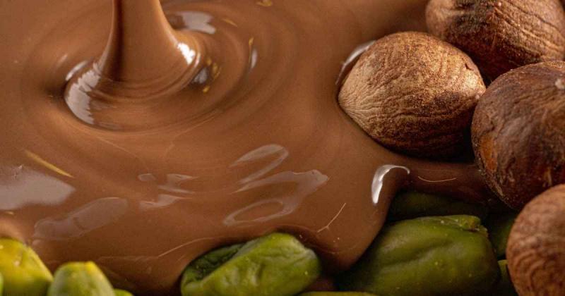 Boletín Chocolate x Praliné