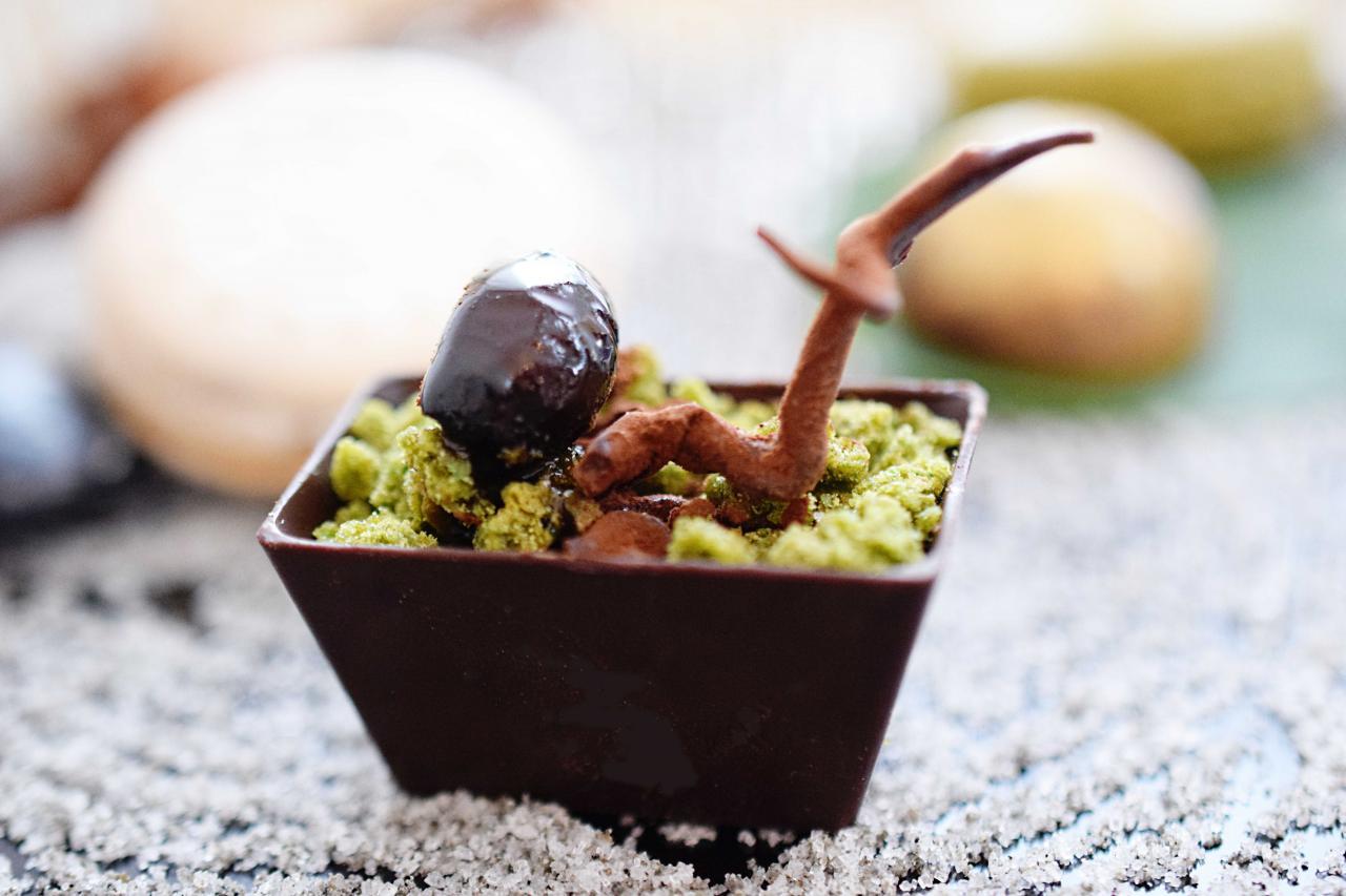 Chocolate Bonsai by Hideko Kawa